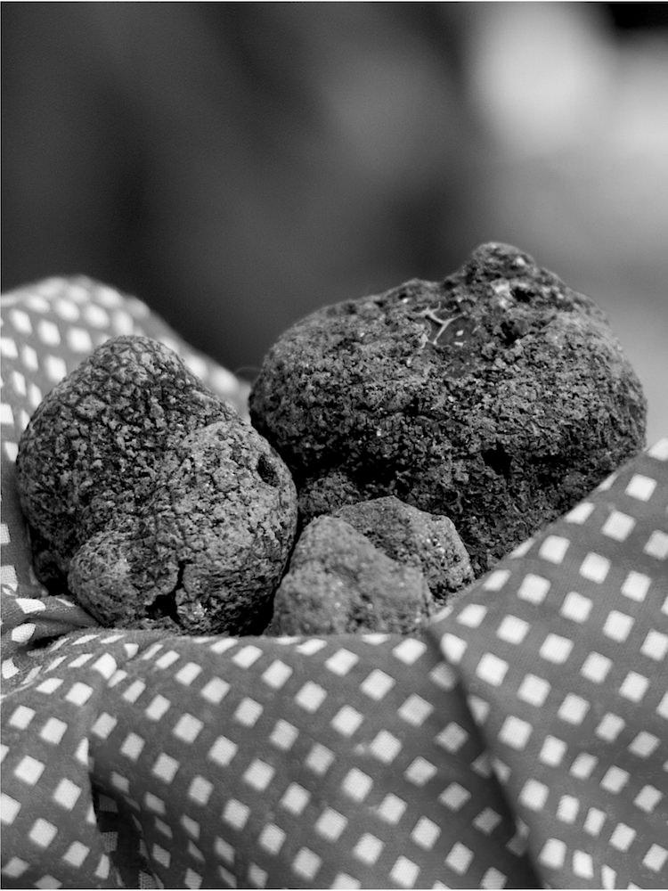 Marché de la truffe
